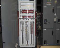 Safety Monitoring Panel